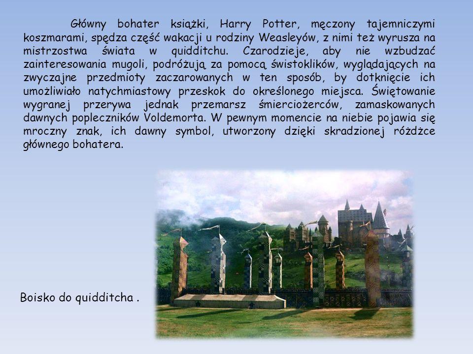 Główny bohater książki, Harry Potter, męczony tajemniczymi koszmarami, spędza część wakacji u rodziny Weasleyów, z nimi też wyrusza na mistrzostwa świata w quidditchu. Czarodzieje, aby nie wzbudzać zainteresowania mugoli, podróżują za pomocą świstoklików, wyglądających na zwyczajne przedmioty zaczarowanych w ten sposób, by dotknięcie ich umożliwiało natychmiastowy przeskok do określonego miejsca. Świętowanie wygranej przerywa jednak przemarsz śmierciożerców, zamaskowanych dawnych popleczników Voldemorta. W pewnym momencie na niebie pojawia się mroczny znak, ich dawny symbol, utworzony dzięki skradzionej różdżce głównego bohatera.