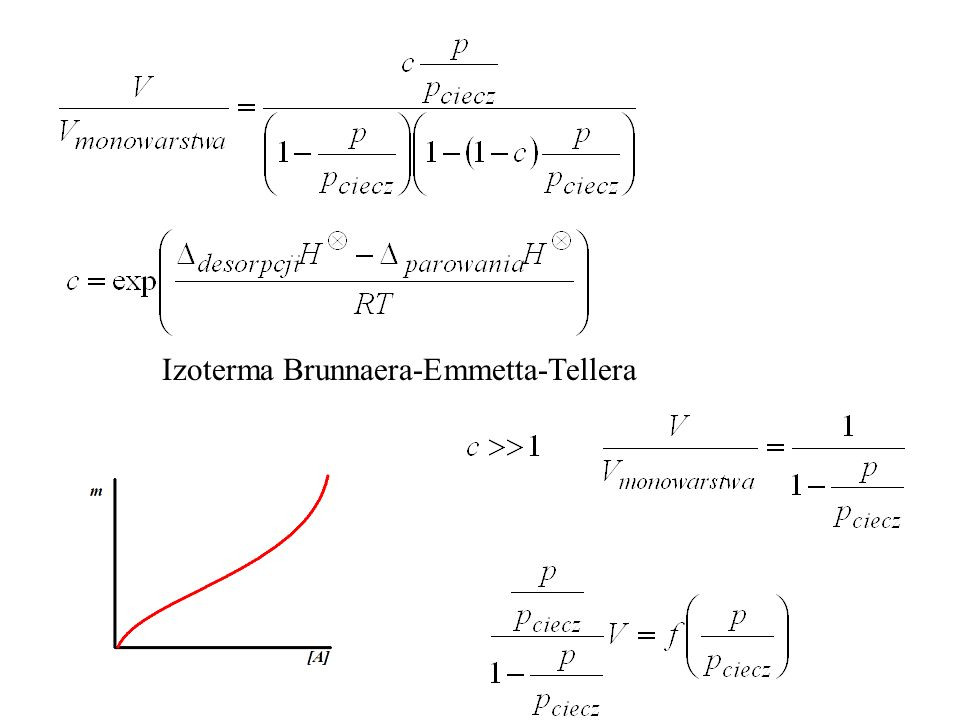 Izoterma Brunnaera-Emmetta-Tellera