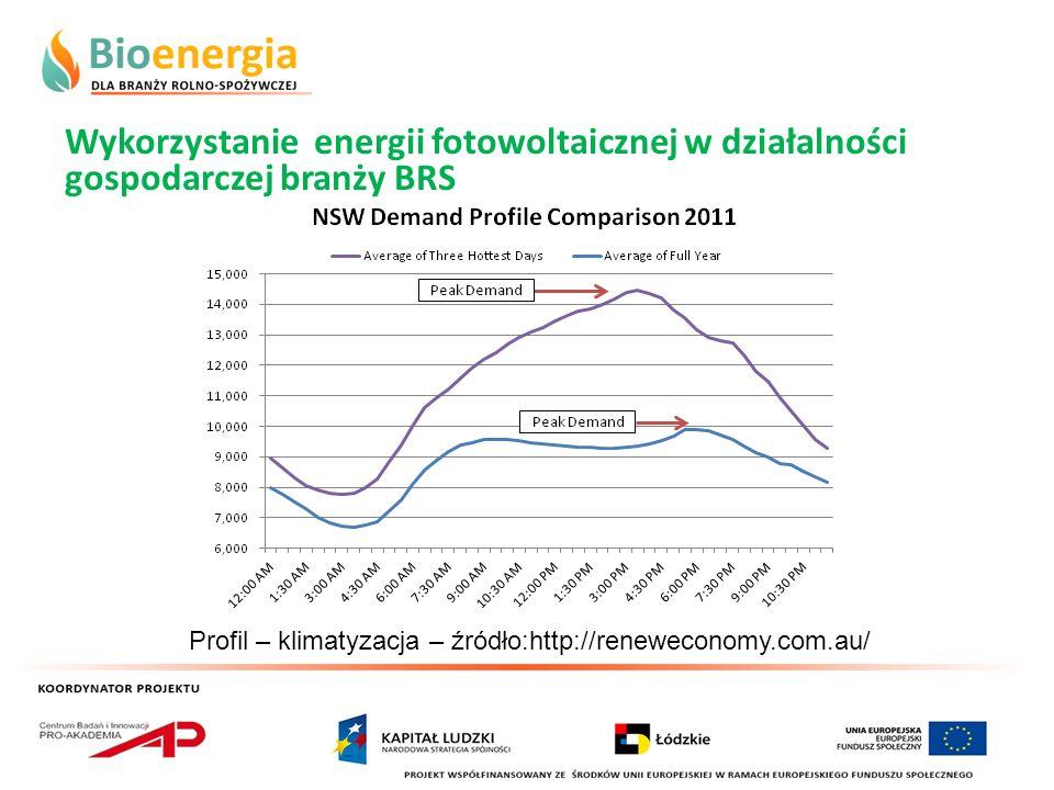 Wykorzystanie energii fotowoltaicznej w działalności gospodarczej branży BRS