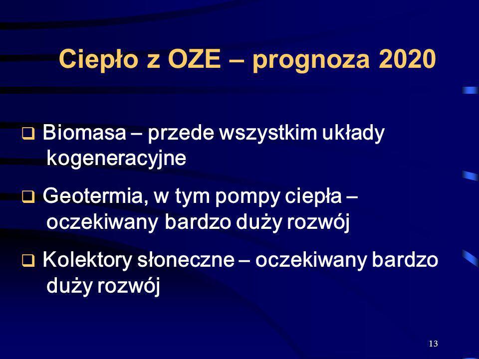 Ciepło z OZE – prognoza 2020 Biomasa – przede wszystkim układy kogeneracyjne. Geotermia, w tym pompy ciepła – oczekiwany bardzo duży rozwój.