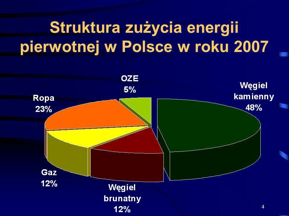 Struktura zużycia energii pierwotnej w Polsce w roku 2007