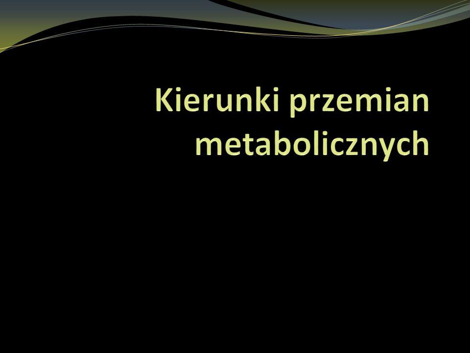 Kierunki przemian metabolicznych