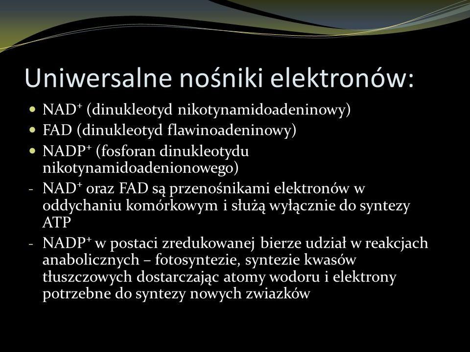 Uniwersalne nośniki elektronów: