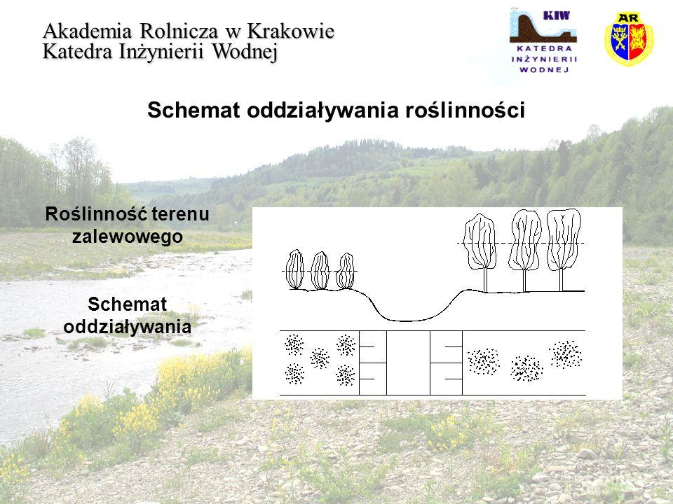 Schemat oddziaływania roślinności
