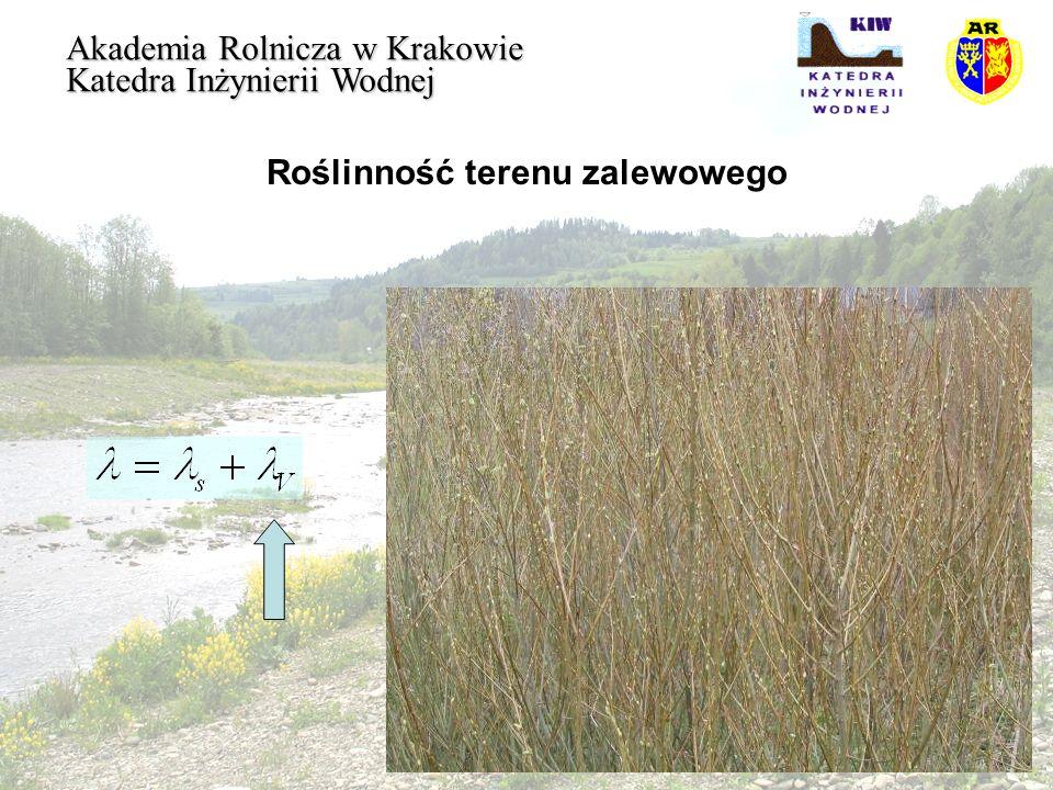 Roślinność terenu zalewowego