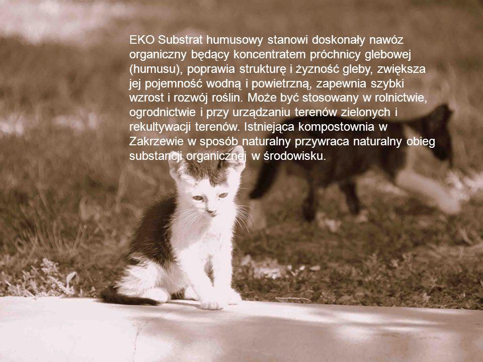 EKO Substrat humusowy stanowi doskonały nawóz organiczny będący koncentratem próchnicy glebowej (humusu), poprawia strukturę i żyzność gleby, zwiększa jej pojemność wodną i powietrzną, zapewnia szybki wzrost i rozwój roślin.
