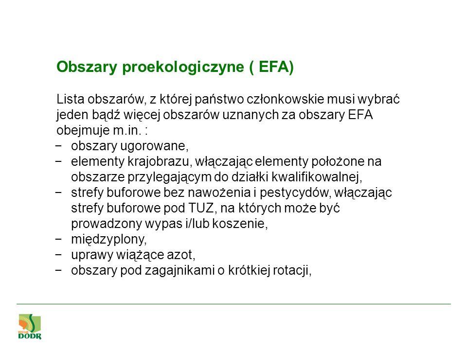 Obszary proekologiczyne ( EFA)