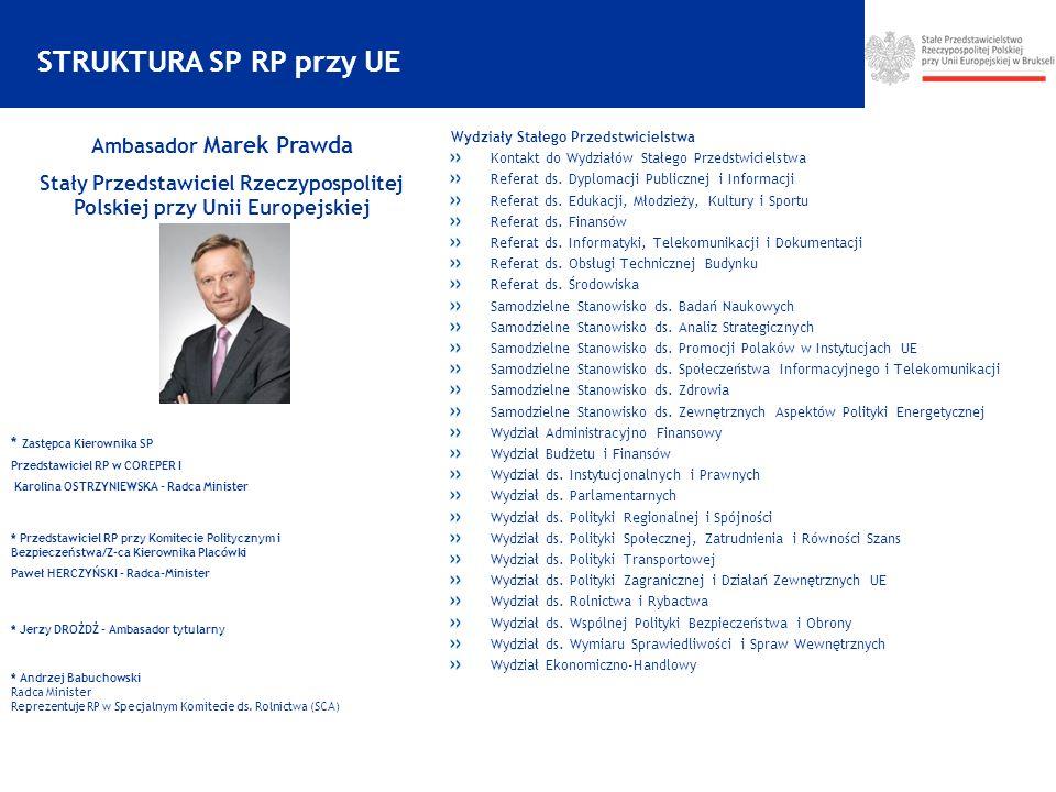 STRUKTURA SP RP przy UE Ambasador Marek Prawda