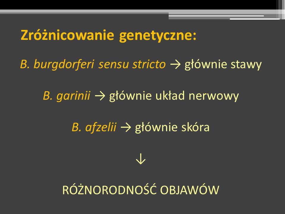 Zróżnicowanie genetyczne: