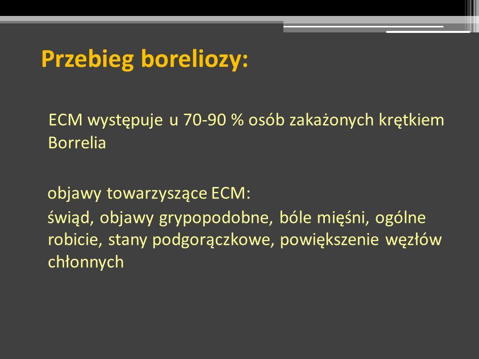 Przebieg boreliozy: ECM występuje u 70-90 % osób zakażonych krętkiem Borrelia. objawy towarzyszące ECM: