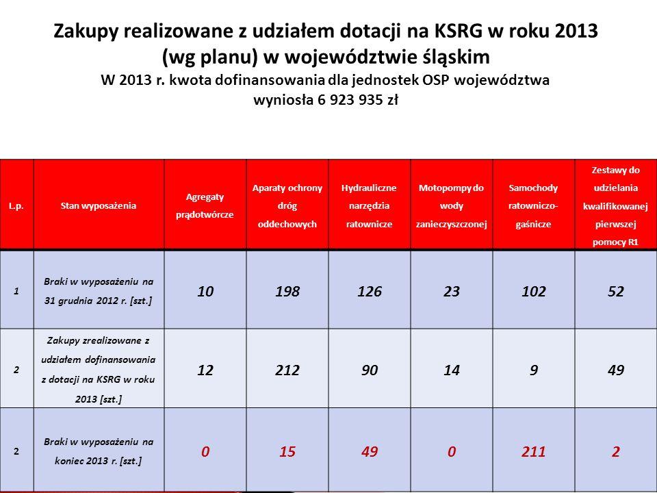 Zakupy realizowane z udziałem dotacji na KSRG w roku 2013 (wg planu) w województwie śląskim