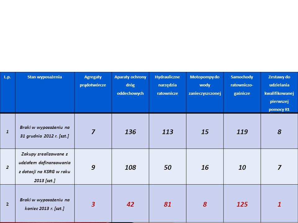 Zakupy realizowane z udziałem dotacji na KSRG w roku 2013 (wg planu) w województwie łódzkim