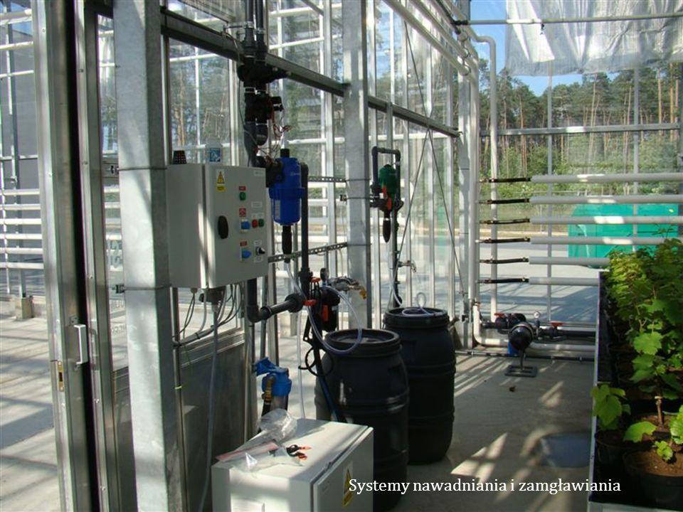 Systemy nawadniania i zamgławiania