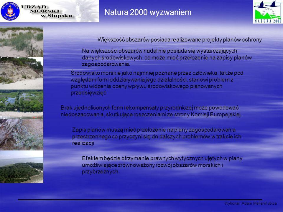 Natura 2000 wyzwaniem Większość obszarów posiada realizowane projekty planów ochrony.