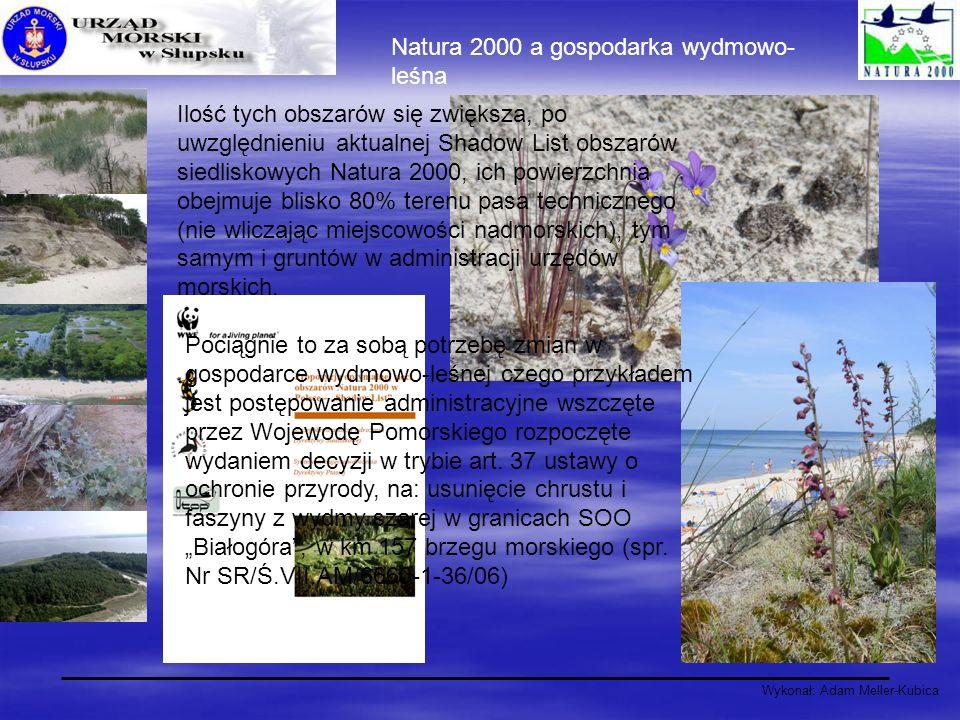 Natura 2000 a gospodarka wydmowo-leśna