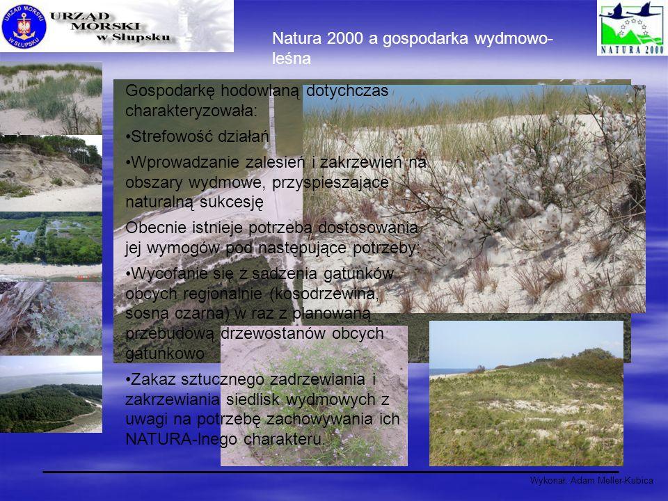 Natura 2000 a gospodarka wydmowo- leśna