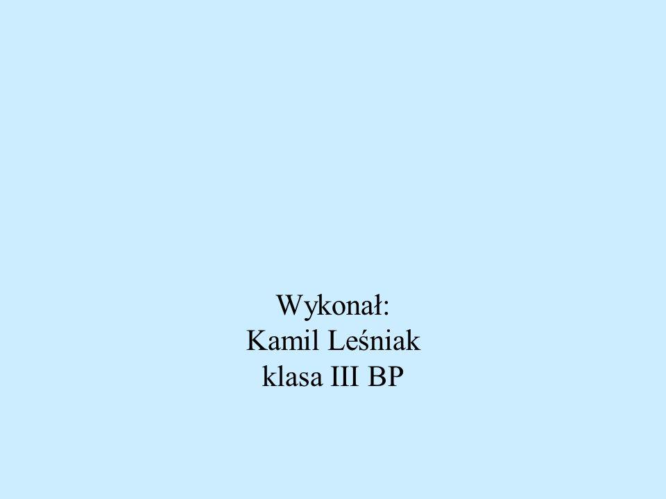 Wykonał: Kamil Leśniak klasa III BP