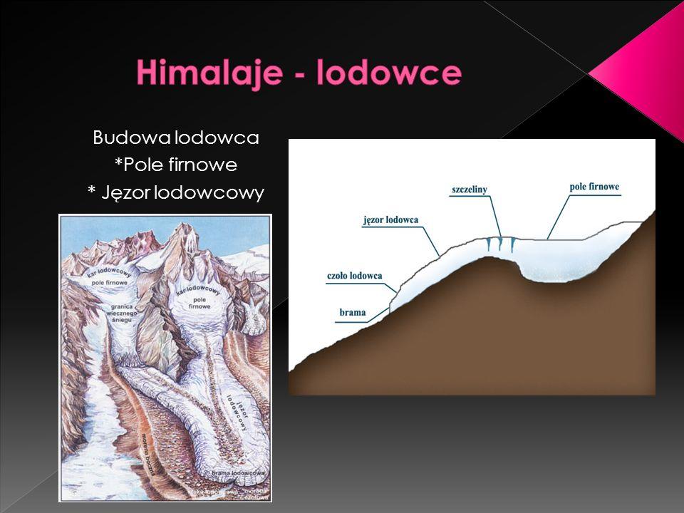 Himalaje - lodowce Budowa lodowca *Pole firnowe * Jęzor lodowcowy