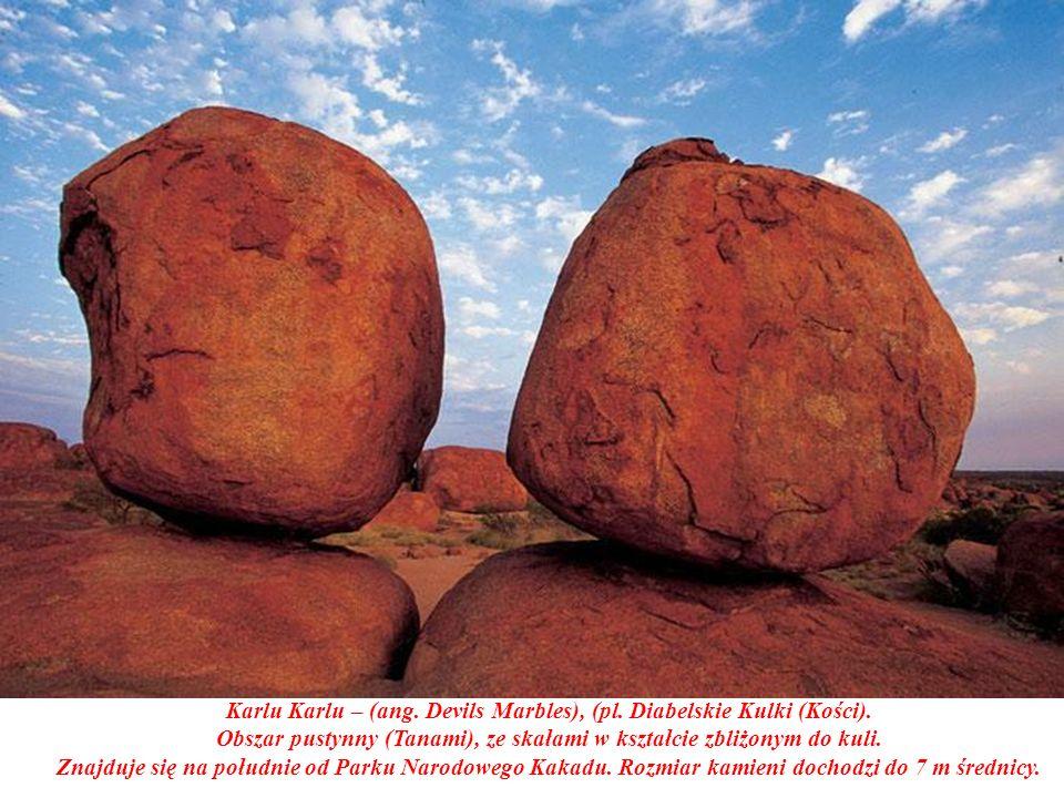Obszar pustynny (Tanami), ze skałami w kształcie zbliżonym do kuli.