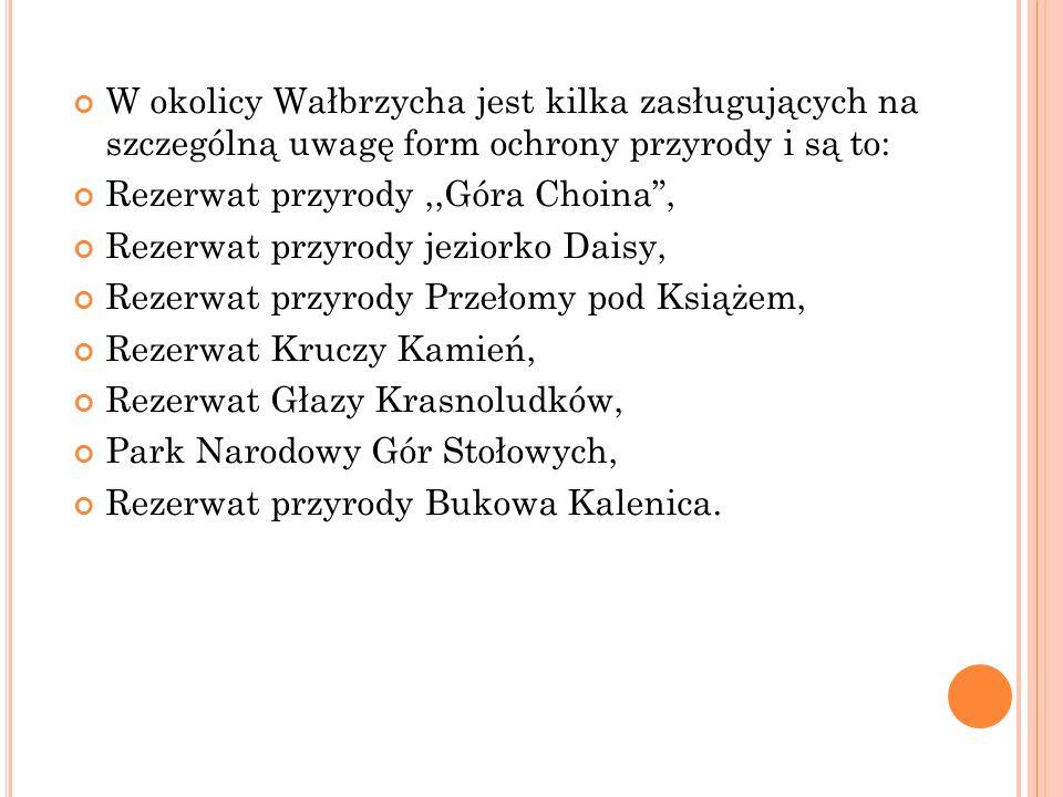 W okolicy Wałbrzycha jest kilka zasługujących na szczególną uwagę form ochrony przyrody i są to: