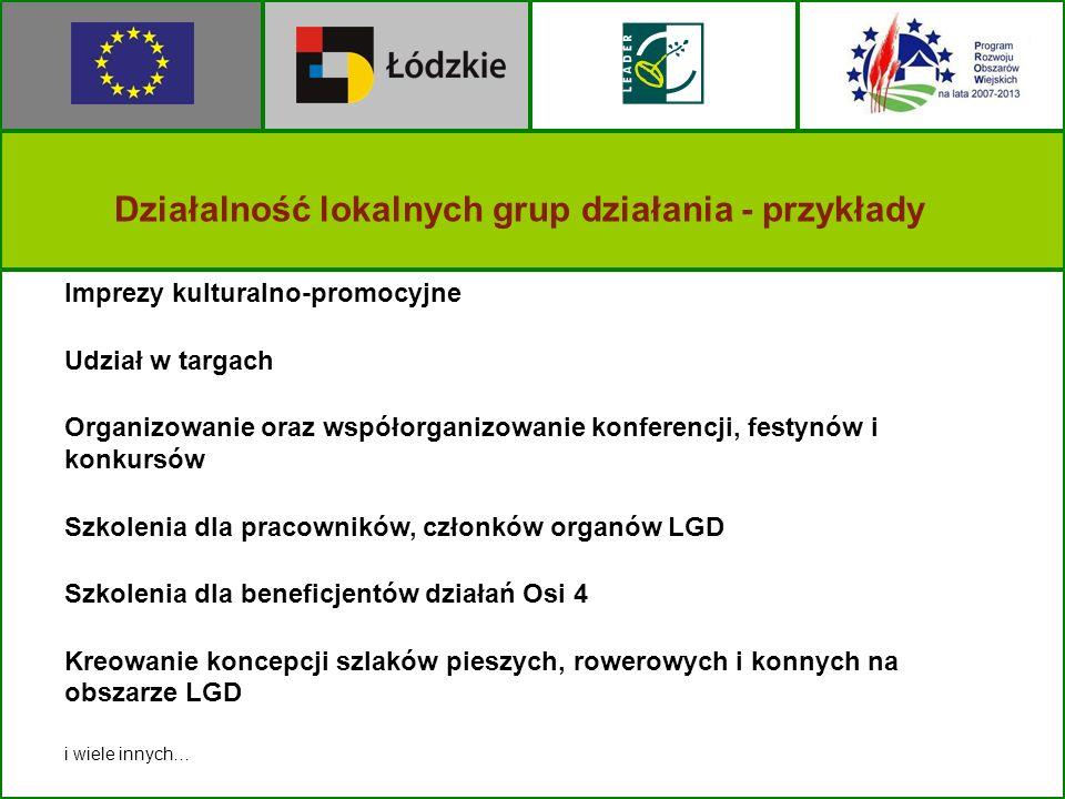 Działalność lokalnych grup działania - przykłady