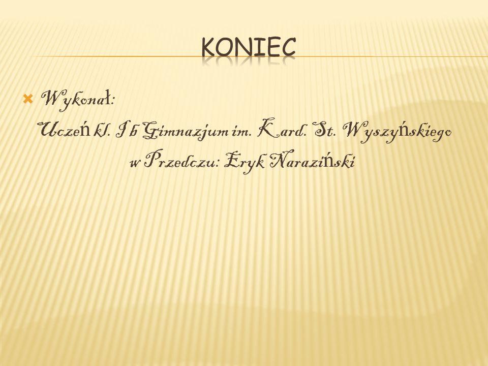 Koniec Wykonał: Uczeń kl. I b Gimnazjum im. Kard. St. Wyszyńskiego