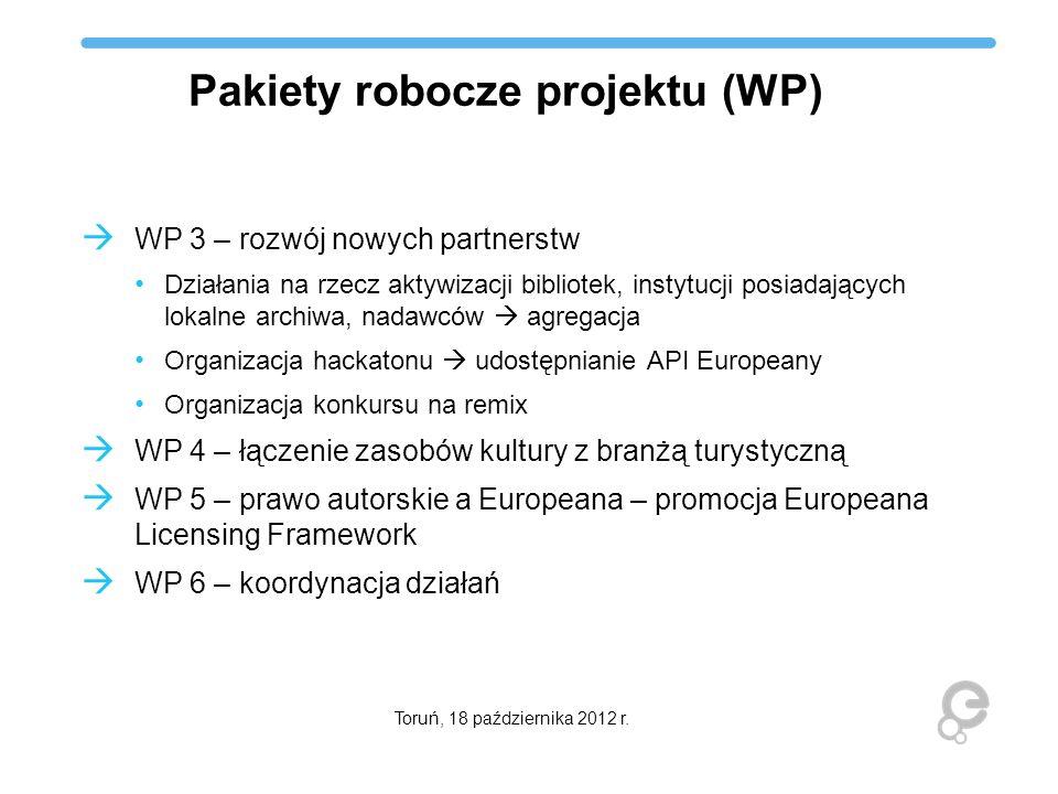 Pakiety robocze projektu (WP)