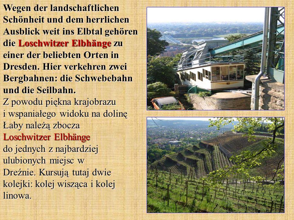 Wegen der landschaftlichen Schönheit und dem herrlichen Ausblick weit ins Elbtal gehören die Loschwitzer Elbhänge zu einer der beliebten Orten in Dresden.