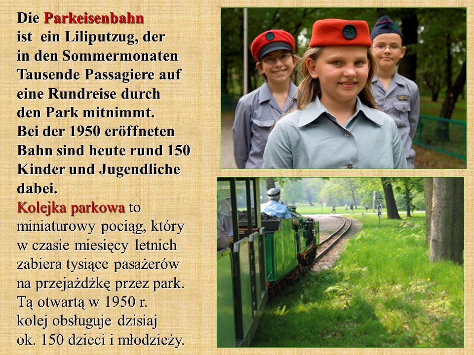 Die Parkeisenbahn ist ein Liliputzug, der in den Sommermonaten Tausende Passagiere auf eine Rundreise durch den Park mitnimmt.