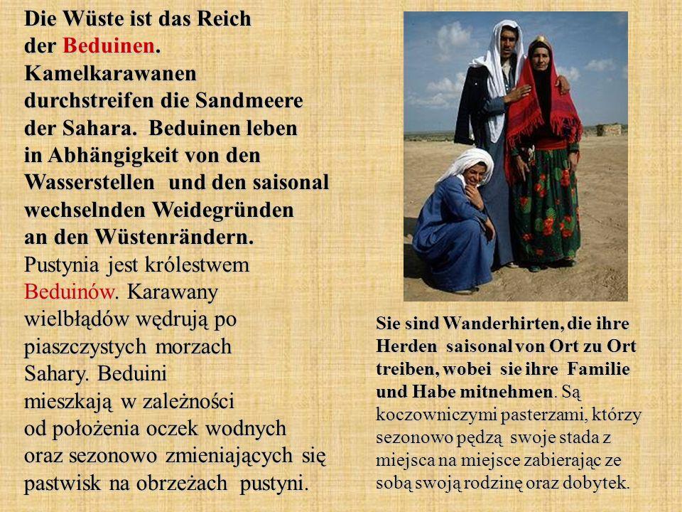 Die Wüste ist das Reich der Beduinen