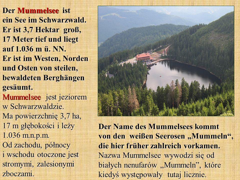 Der Mummelsee ist ein See im Schwarzwald