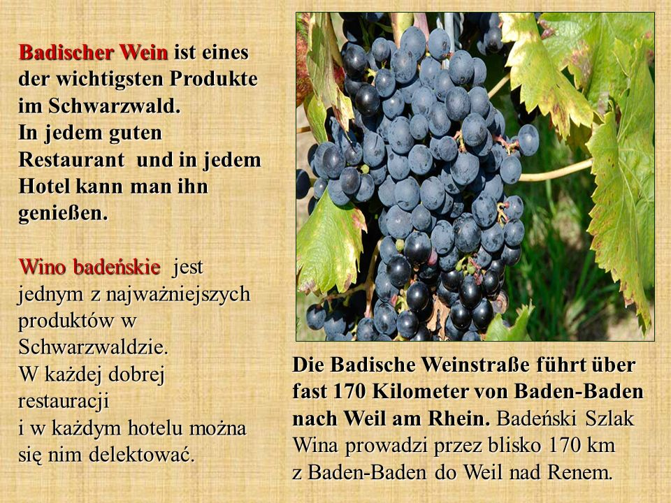 Badischer Wein ist eines der wichtigsten Produkte im Schwarzwald