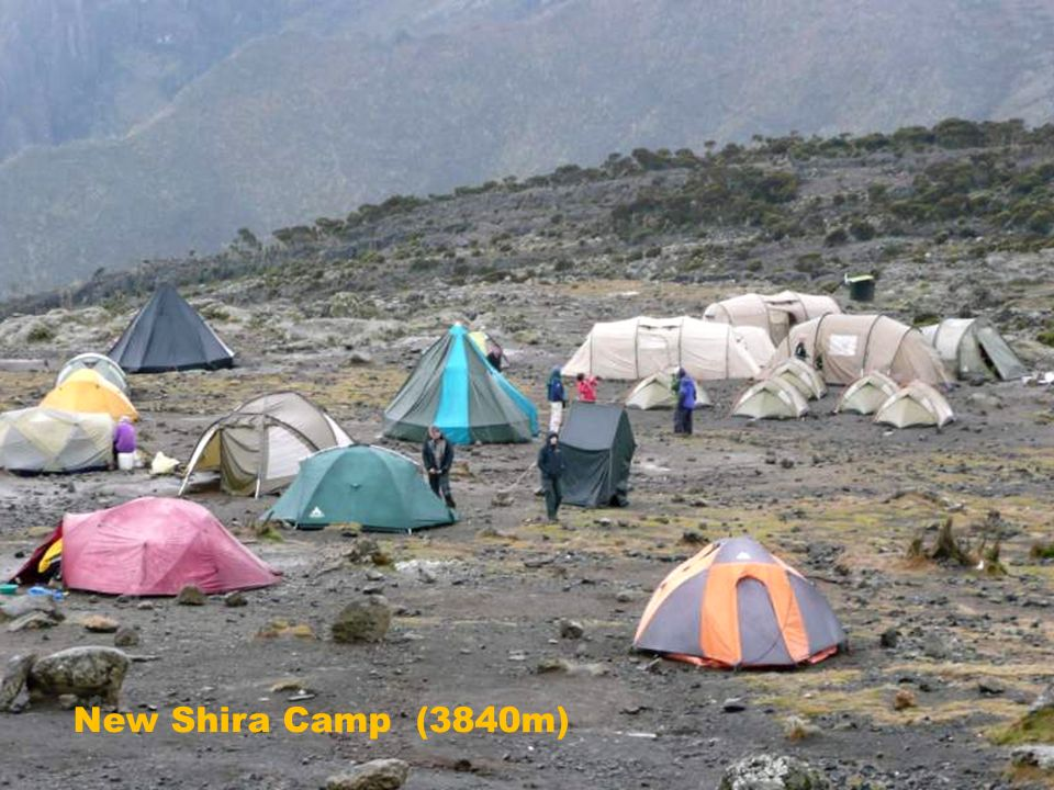 New Shira Camp (3840m)