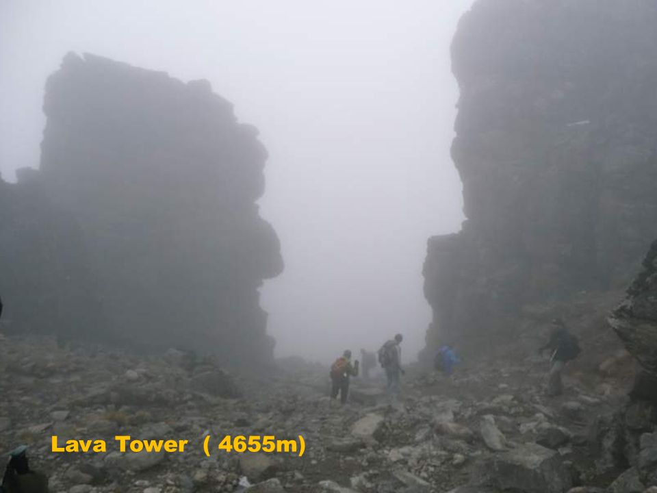 Lava Tower ( 4655m)