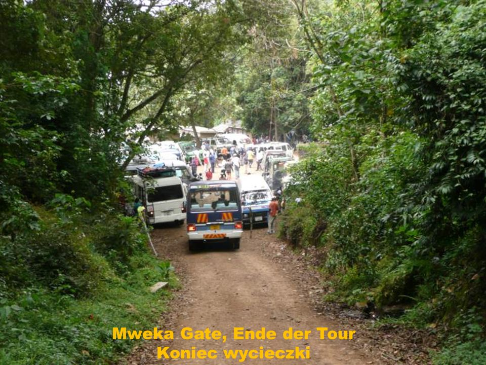 Mweka Gate, Ende der Tour