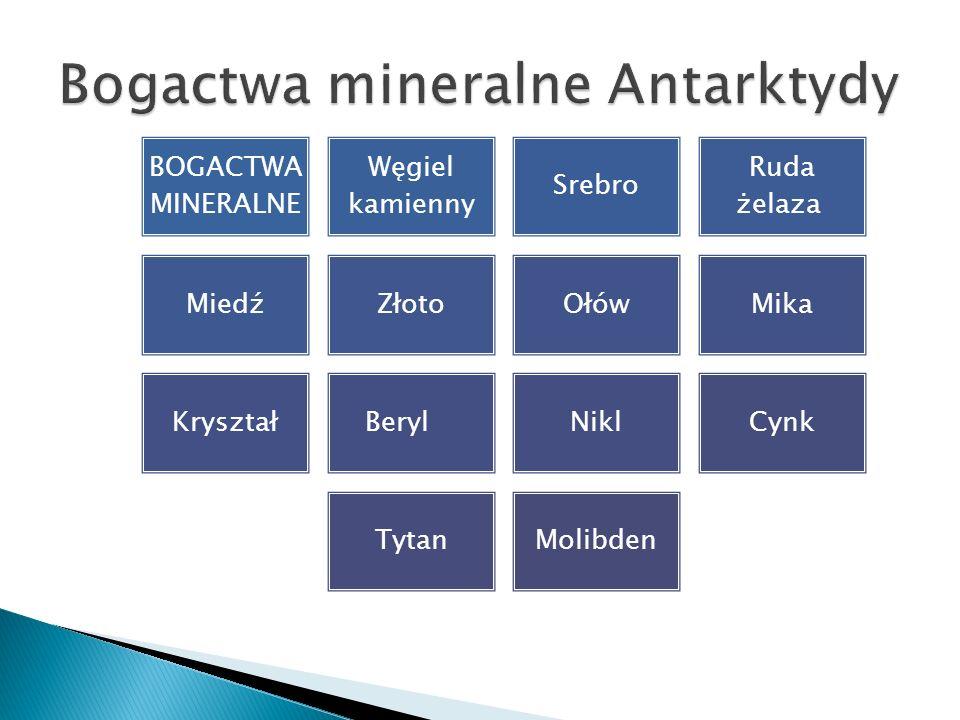 Bogactwa mineralne Antarktydy