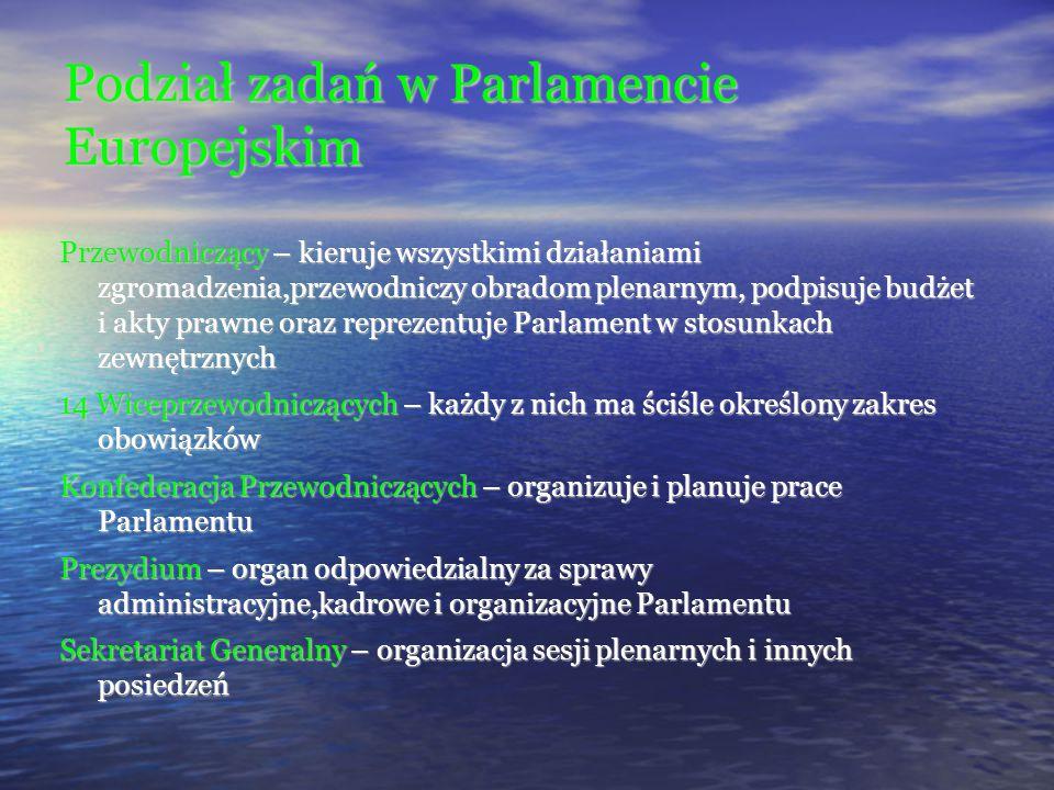 Podział zadań w Parlamencie Europejskim