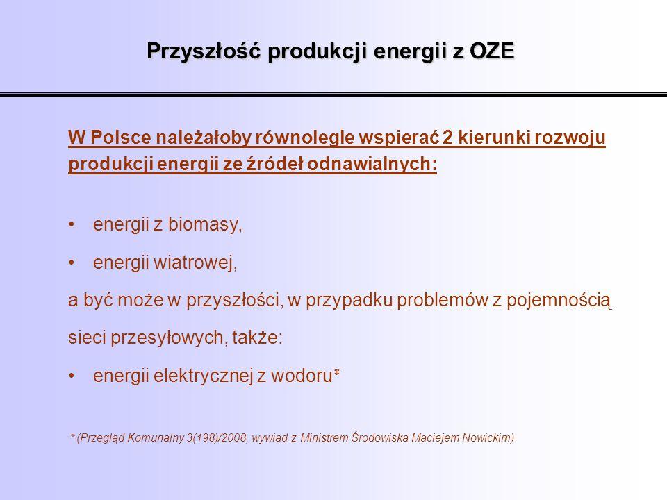 Przyszłość produkcji energii z OZE