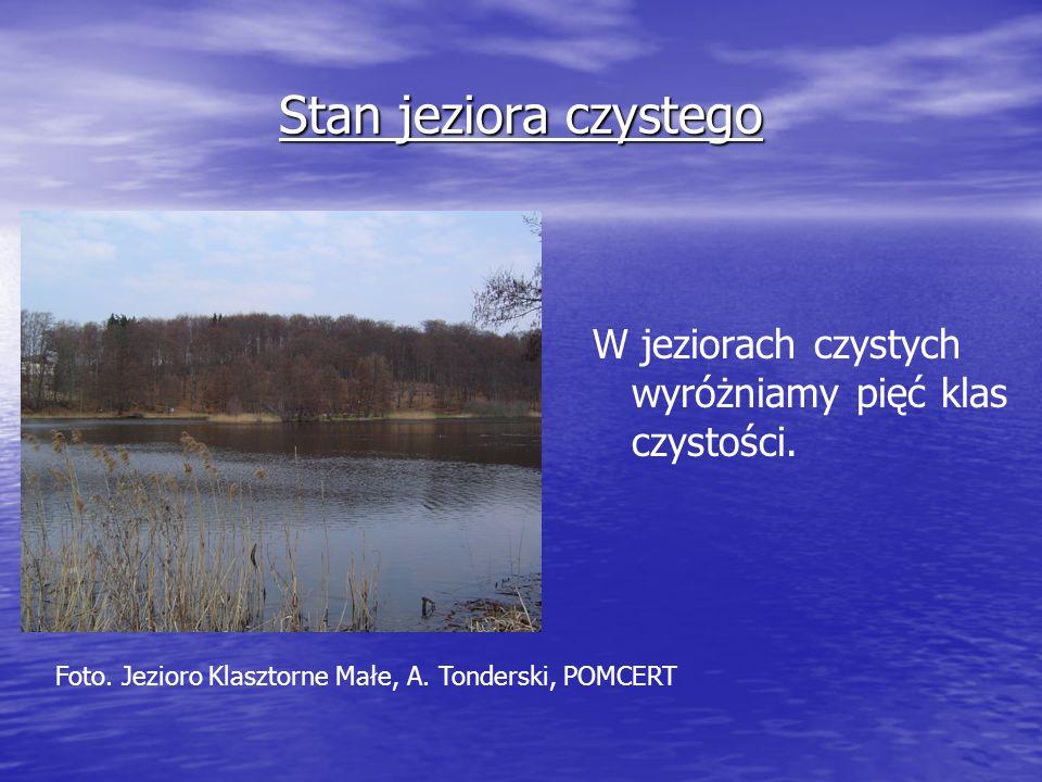 Stan jeziora czystego W jeziorach czystych wyróżniamy pięć klas czystości.