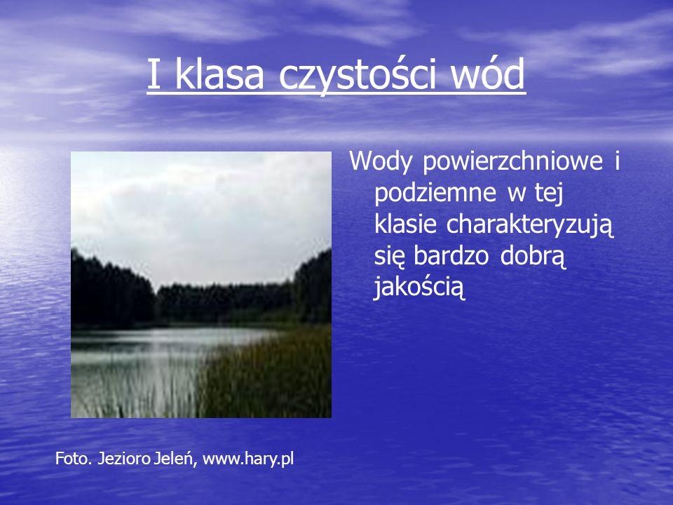 I klasa czystości wód Wody powierzchniowe i podziemne w tej klasie charakteryzują się bardzo dobrą jakością.