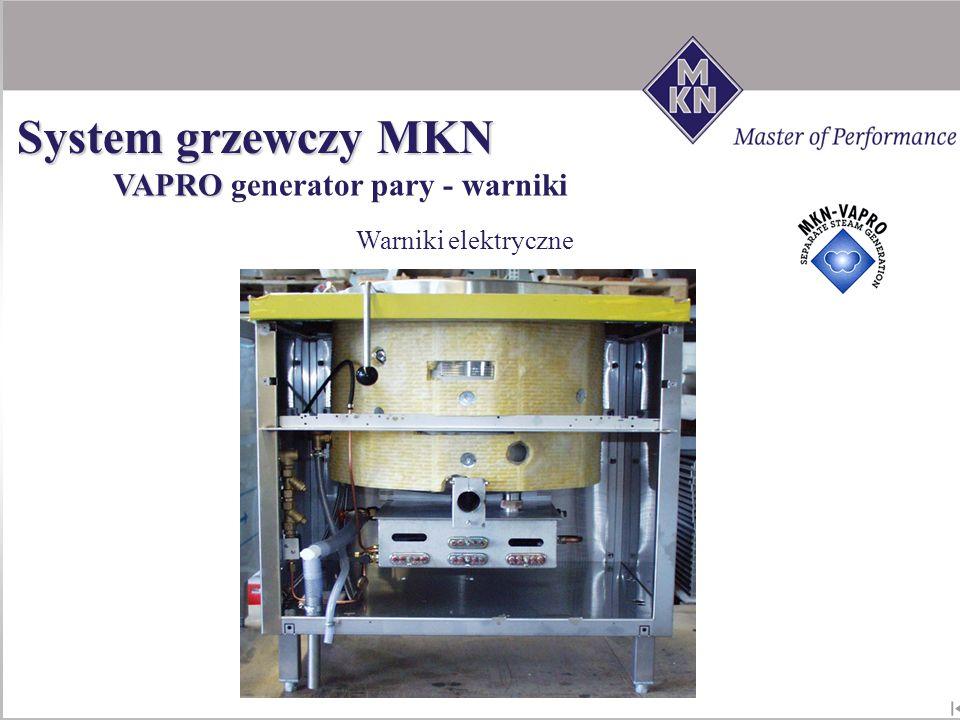System grzewczy MKN VAPRO generator pary - warniki Warniki elektryczne