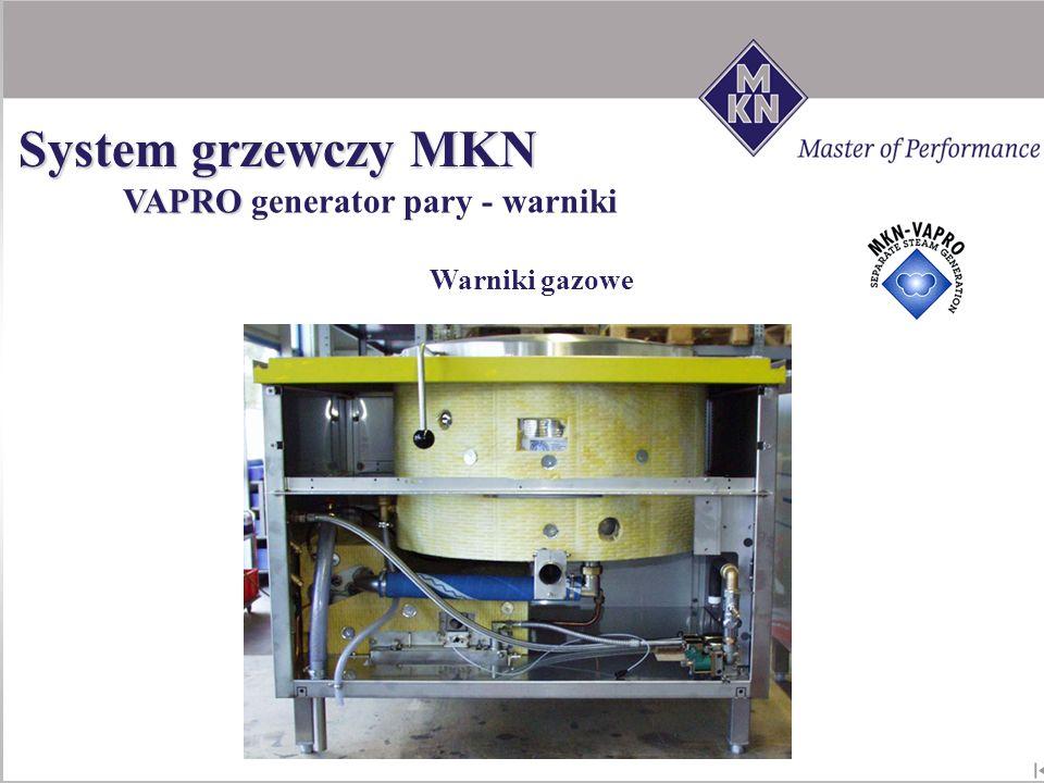 System grzewczy MKN VAPRO generator pary - warniki Warniki gazowe