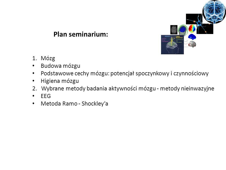 Plan seminarium: Mózg Budowa mózgu