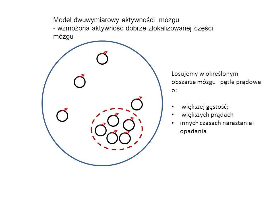 Model dwuwymiarowy aktywności mózgu