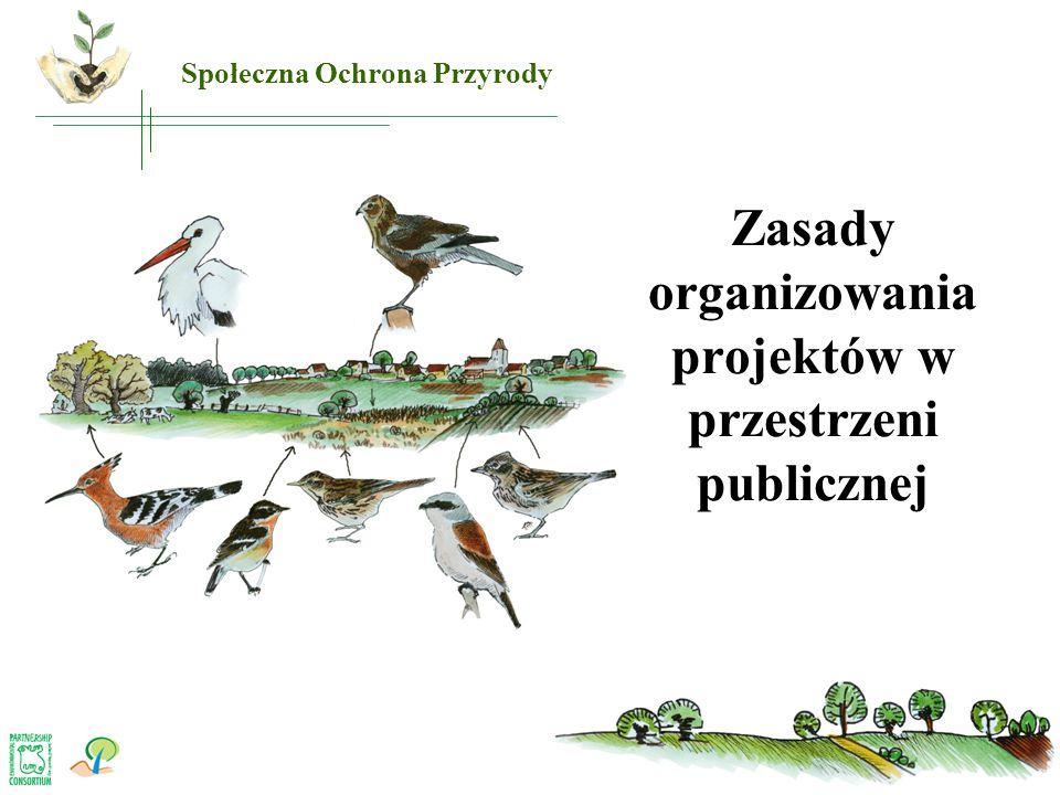 Zasady organizowania projektów w przestrzeni publicznej