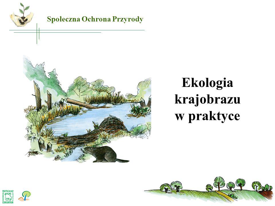 Ekologia krajobrazu w praktyce