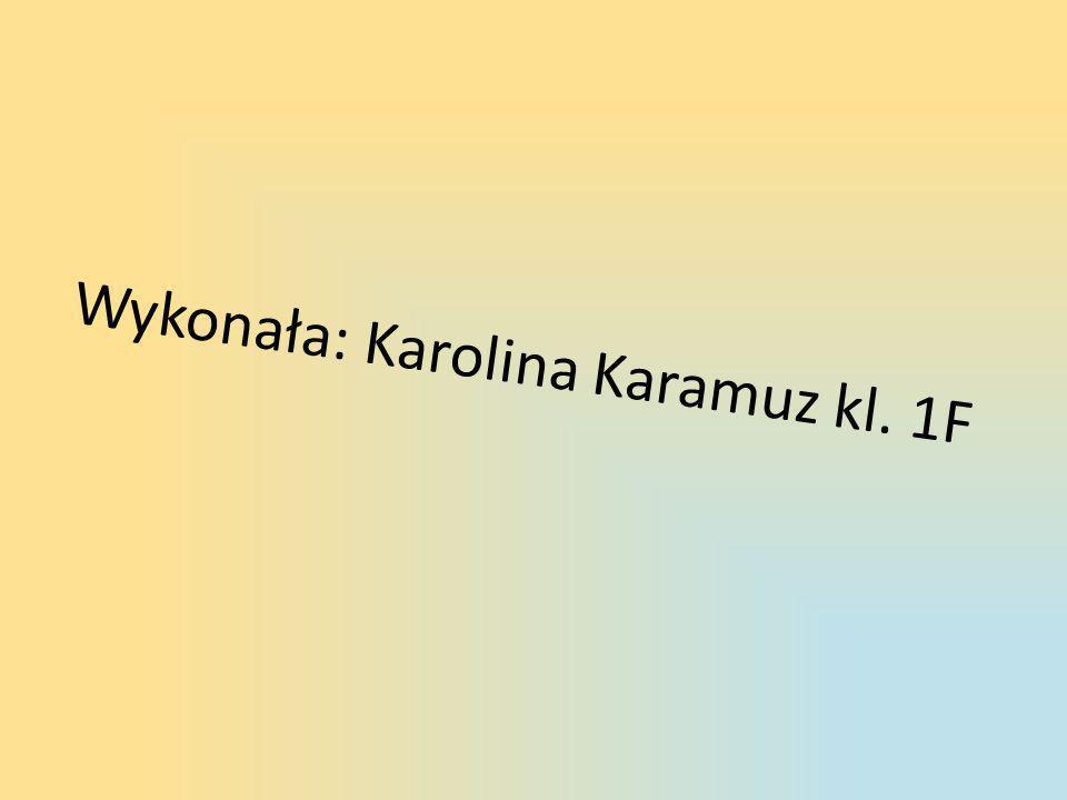 Wykonała: Karolina Karamuz kl. 1F