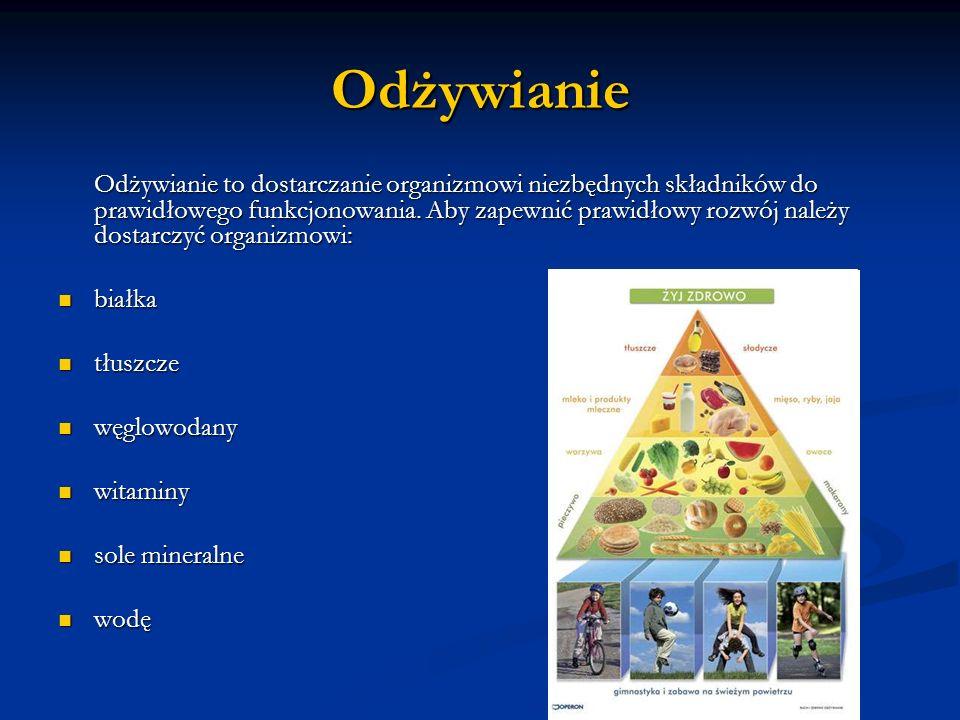 Odżywianie białka tłuszcze węglowodany witaminy sole mineralne wodę