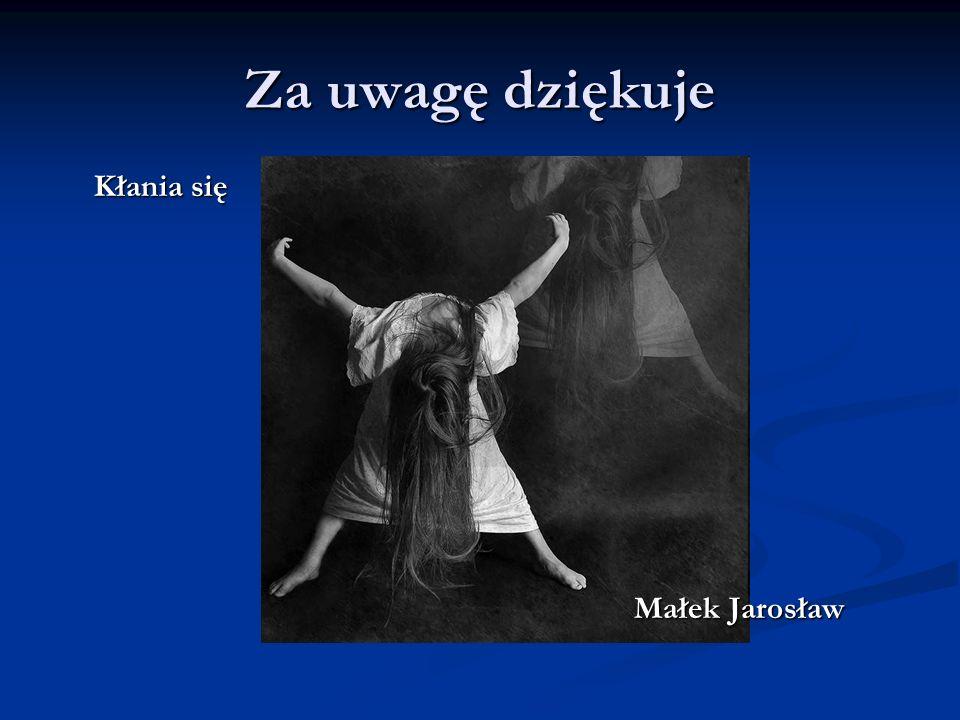 Za uwagę dziękuje Kłania się Małek Jarosław