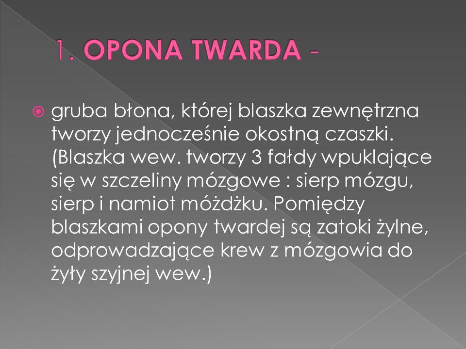 1. OPONA TWARDA -